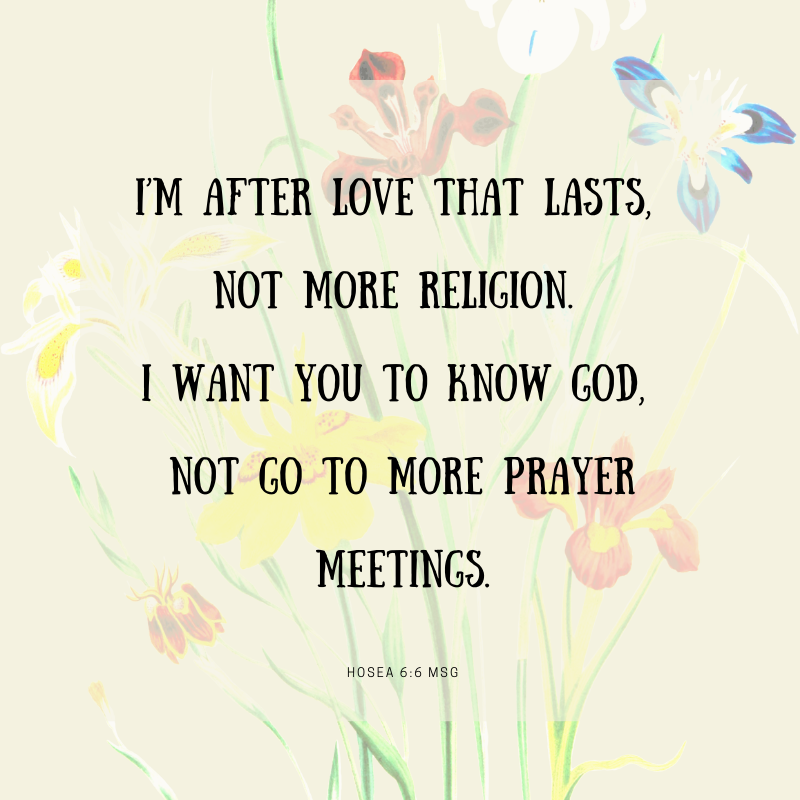 Floral background with Hosea 6:6 - I am after love that lasts, not more religion. I want you to know God, not go to more prayer meetings. (Message version)